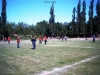 Drosa 2005